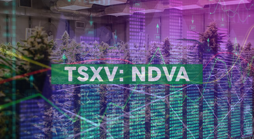 Indiva Grants Incentive Stock Options and Announces Interest Payment on Debentures