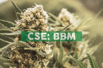 Blueberries Medical Closes $1M Strategic Financing Led by a Leading Latin American Private Equity Group with Extensive International Cannabis Industry Expertise; Appoints Facundo Garretón as Chairman & Interim CEO