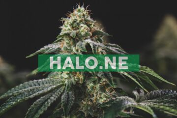 Halo Announces Pricing of Overnight Marketed Offering of Units