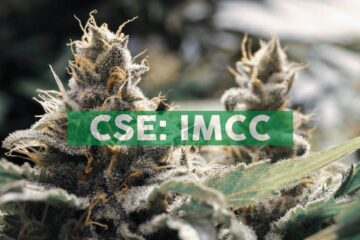 IM Cannabis Releases Message from CEO and 2021 Outlook