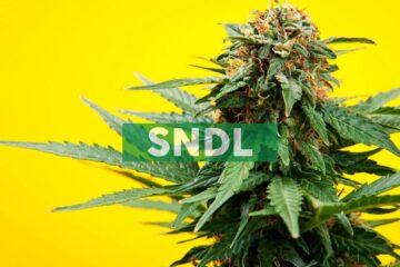 Sundial Growers Announces US$100 Million Registered Offering