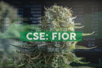 Fiore Cannabis Ltd. - Corporate Update