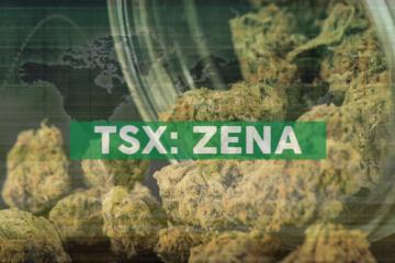 Zenabis Provides Update on Strategic Alternatives