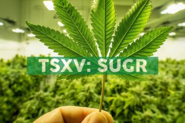 Sugarbud Expands Distribution to Medical Cannabis Market, Enters National Supply Agreement with CannMart to Provide Access to Registered Medical Patients