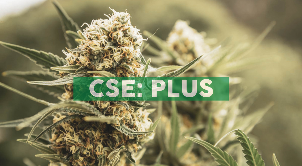 Plus Products Partners with CannRx Biosciences to Leverage Proprietary Onset Technology