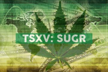 Sugarbud Expands National Distribution Reach, Announces Sales Agency Partnership With Velvet Management Inc.