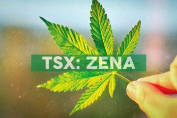 Zenabis Announces the Establishment of an At-the-Market Equity Offering Program