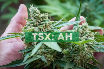 Aleafia Health Launches Cannabis Soft Chews by Bogart's Kitchen