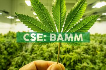 Body and Mind Strengthens Board with Veteran Cannabis Executive