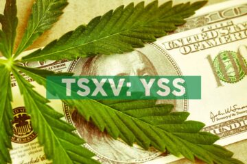 """Alcanna Inc. and YSS Corp. announce closing of reverse takeover and creation of """"Nova Cannabis Inc."""""""