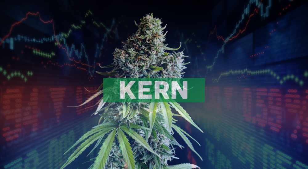 Akerna Nominates Pharmaceutical and Cannabis Industry Expert to Board of Directors