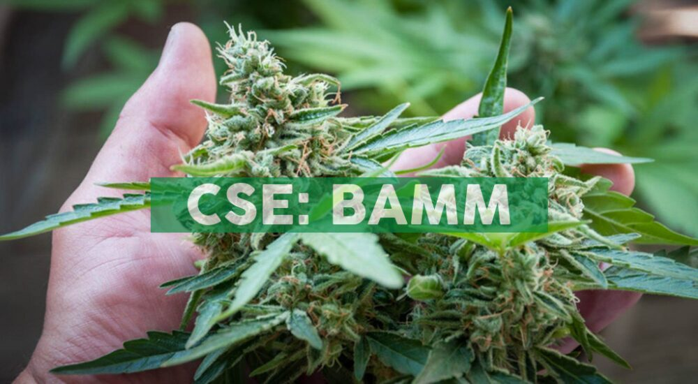 Body and Mind Commences Arkansas Cultivation