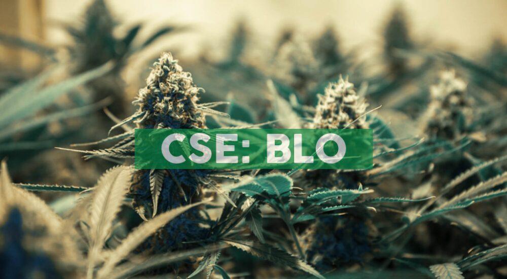 Cannabix Technologies to Beta Test Marijuana Breathalyzer with Private Clinic in Northwestern U.S.