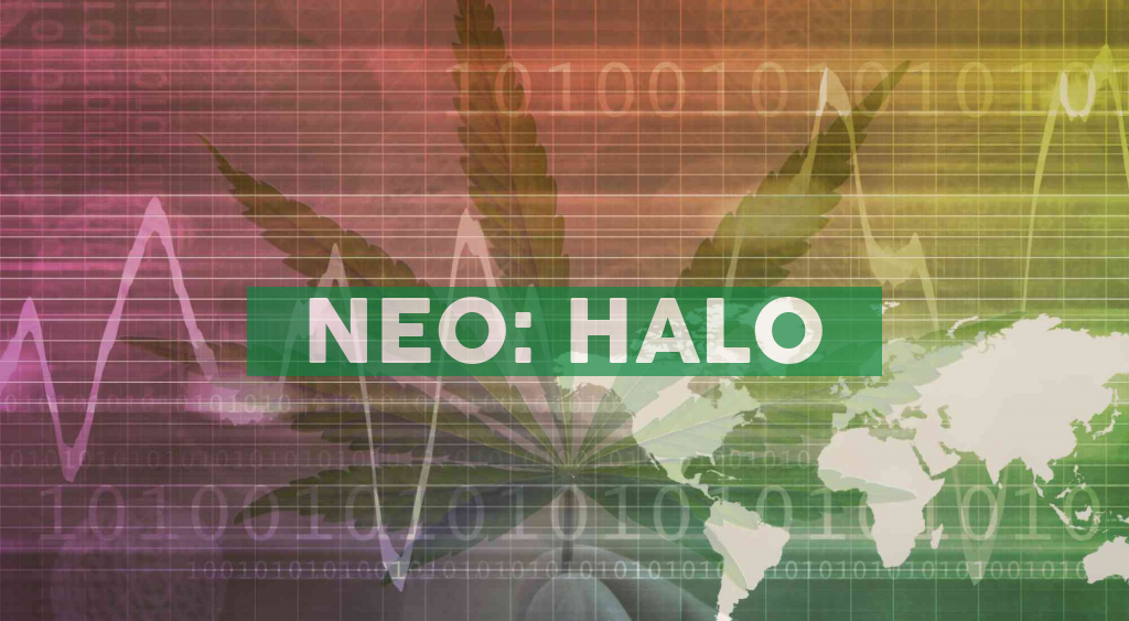 Halo Collective Announces Proposed Spin-off of Assets to Create Halo Tek