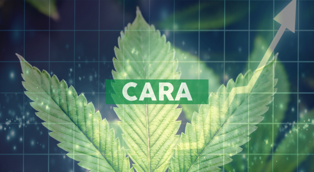 Cara Therapeutics to Present at the 20th Annual Needham Healthcare Conference