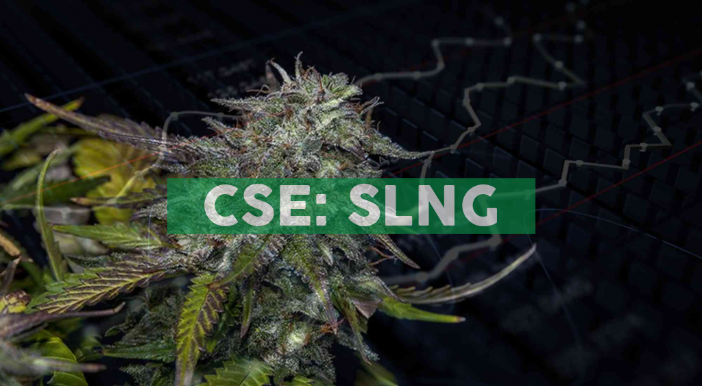 SLANG Worldwide Announces Selected Preliminary Fourth Quarter and Full Year 2020 Financial Results and Corporate Updates