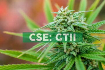 Green Thumb Industries Enters Virginia Cannabis Market