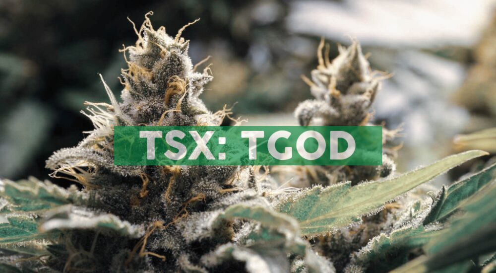 TGOD Introduces New Promise for Quality, Consistency, and High-THC Organic Whole Flower Across Canada