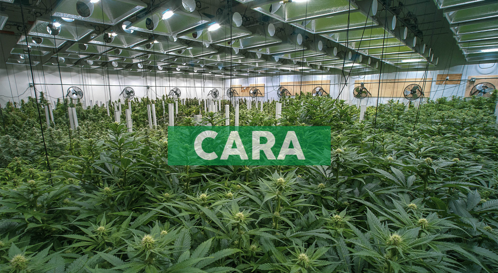 Cara Therapeutics to Announce First Quarter 2021 Financial Results on May 10, 2021