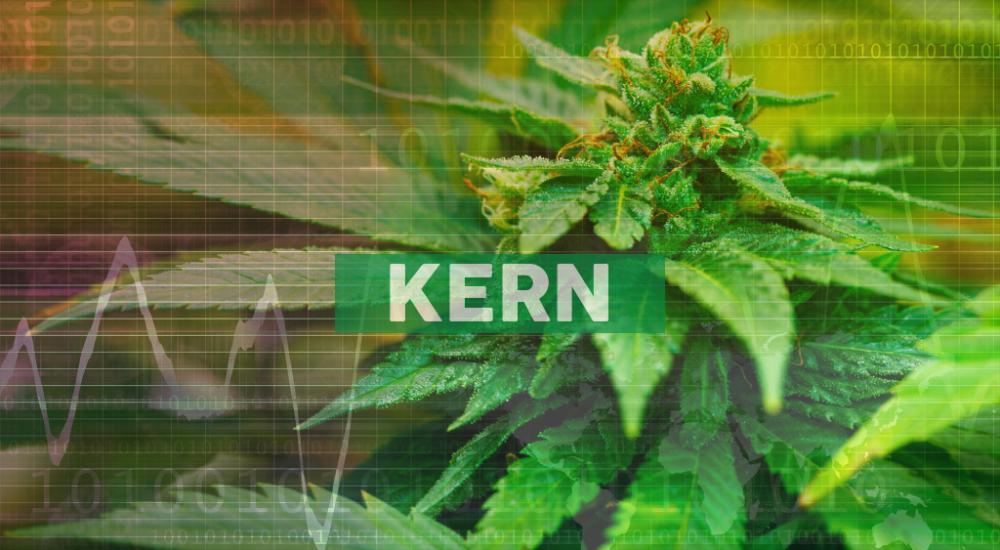 Memorial Day Weekend brings in over $234,300,000 of cannabis sales