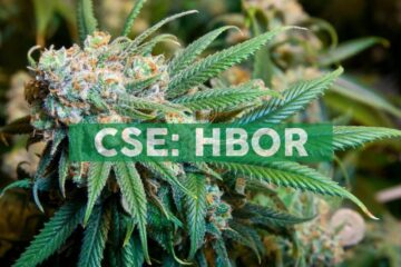 Harborside Receives Approval to Commence Adult-Use Sales at San Leandro Dispensary