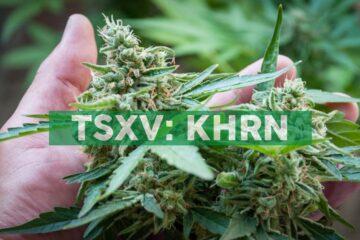 Khiron provides European management updates