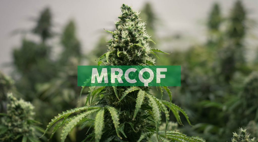 """Mercer Park Brand Acquisition Corp. (""""BRND"""" or the """"Company"""") Provides Update on Anticipated Shareholdings of the Company Following Closing of Qualifying Transaction"""