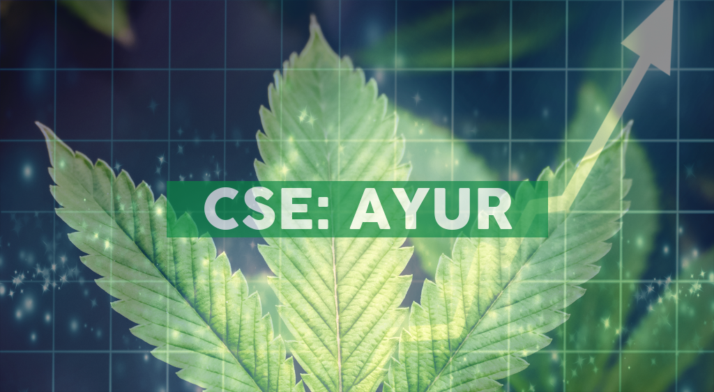 Ayurcann Expansion Continues with New Joint Venture with Largest Medical Cannabis Company in Israel