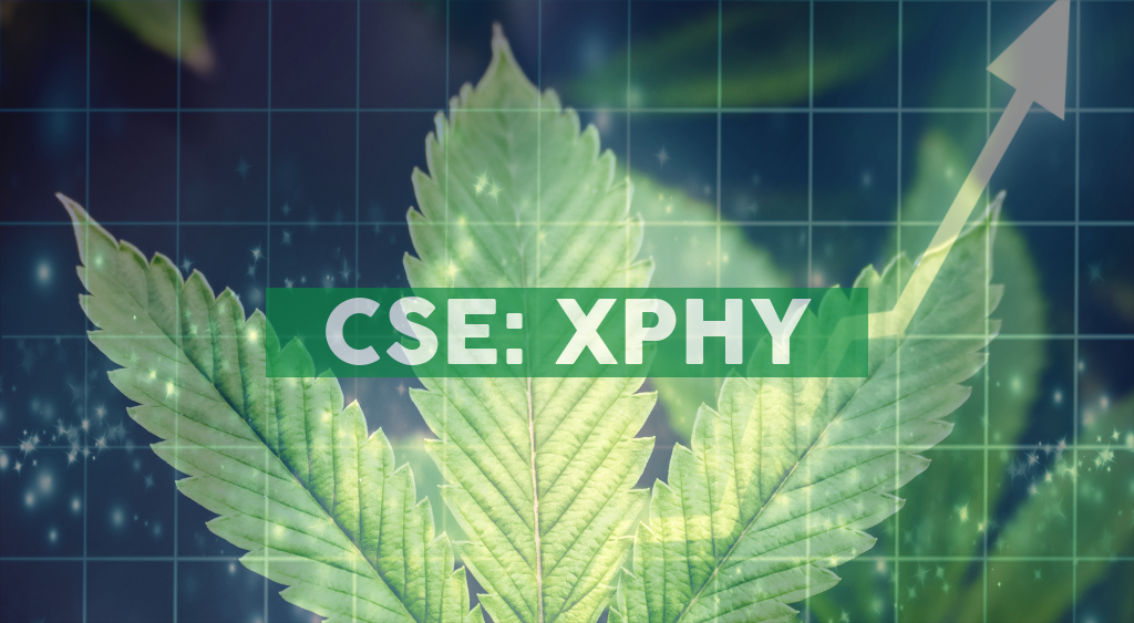 XPhyto Therapeutics Corp. Featured in Syndicated Broadcast Covering Latest Progress Report on Mescaline Program for Psychedelic Therapies
