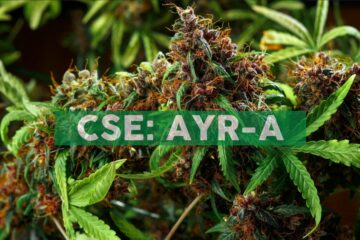 Ayr Wellness Receives Provisional Licenses to Sell Adult-Use Cannabis at Greater Boston Dispensaries in Somerville and Watertown