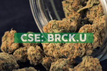 BellRock Brands Announces Cease Trade Order Issued by the British Columbia Securities Commission