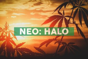 Halo Collective Announces Purchase of KushBar Retail Assets from High Tide