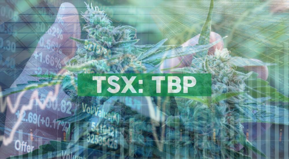 Tetra Bio-Pharma Engages Christine Caron as Patient Partner