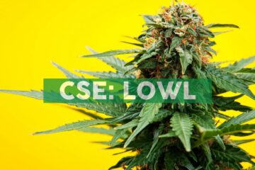 Lowell Farms Inc. Announces Record Revenues and Record Cultivation Output for the Second Quarter