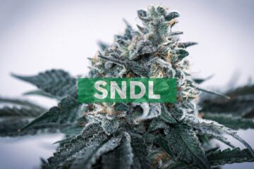 Sundial Growers to Announce Second Quarter 2021 Financial Results on August 12, 2021