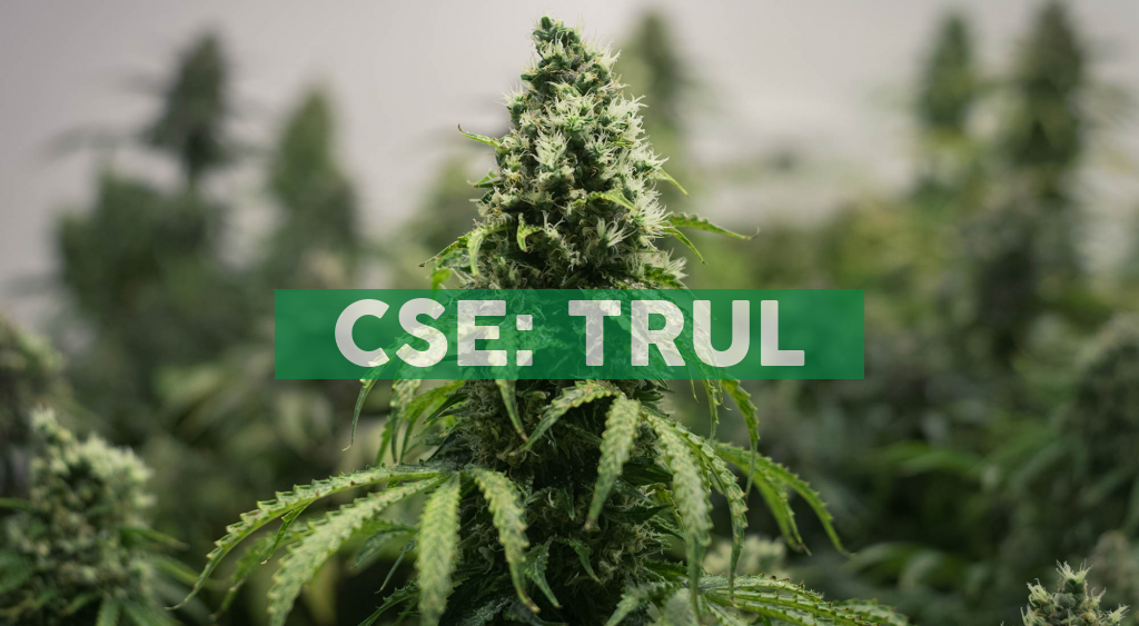 Supreme Court of British Columbia Grants Harvest Health & Recreation Inc. Final Order Approving Arrangement with Trulieve Cannabis Corp.