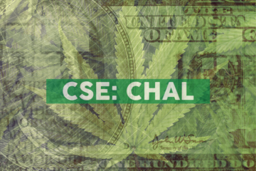 Chalice Brands Ltd. Continues Sequential Revenue Growth