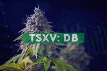 Decibel Cannabis Company Inc. Announces $10 Million Bought Deal Unit Offering