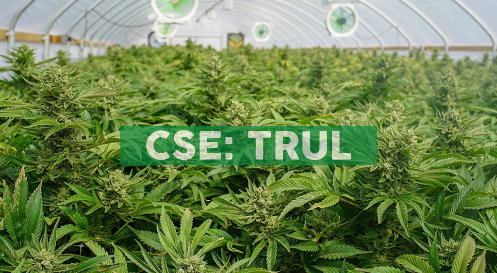 Trulieve Opens New Dispensary in St. Augustine, Florida