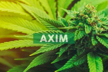 AXIM® Biotech Appoints Ophthalmic Industry Veteran Jeff Busby as Senior VP Business Development