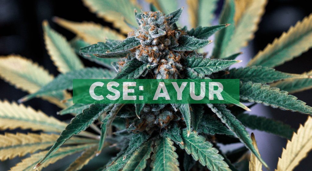 Ayurcann Holdings Corp. has Entered Saskatchewan With National Cannabis Distribution and Begins Investor Relations Initiatives