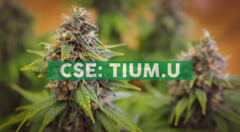 Fluent by Cansortium Opens New Dispensary in Fruitland Park, Florida