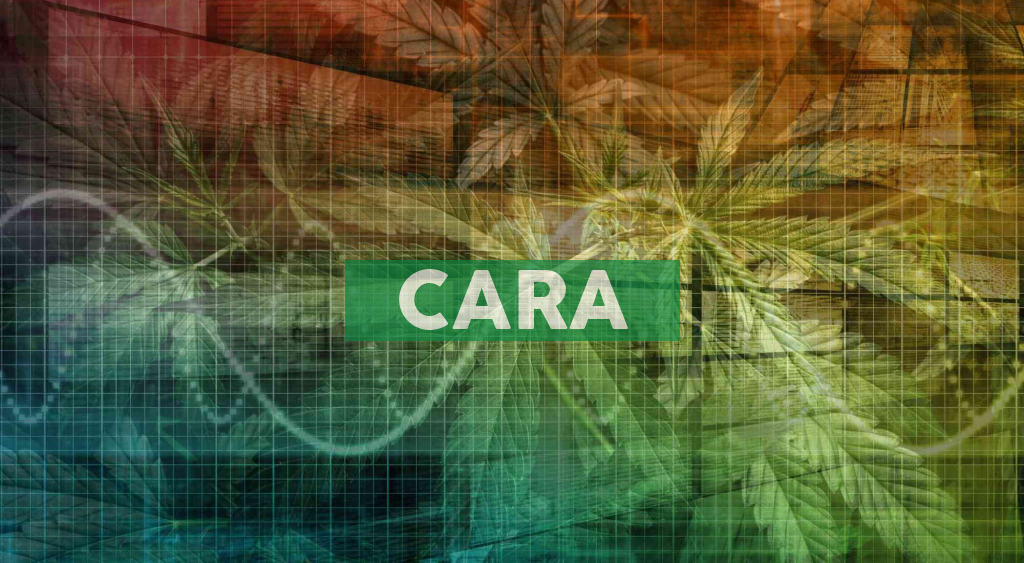 Cara Therapeutics to Present at the the 2021 Cantor Virtual Global Healthcare Conference