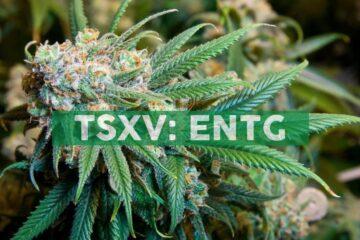 Entourage Health Announces New Ticker Symbol on U.S.-Based OTCQX Market as 'ETRGF' Effective September 1, 2021
