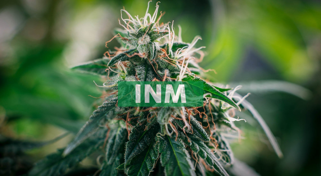 InMed Pharmaceuticals Reports Full Year Fiscal 2021 Financial Results and Provides Business Update