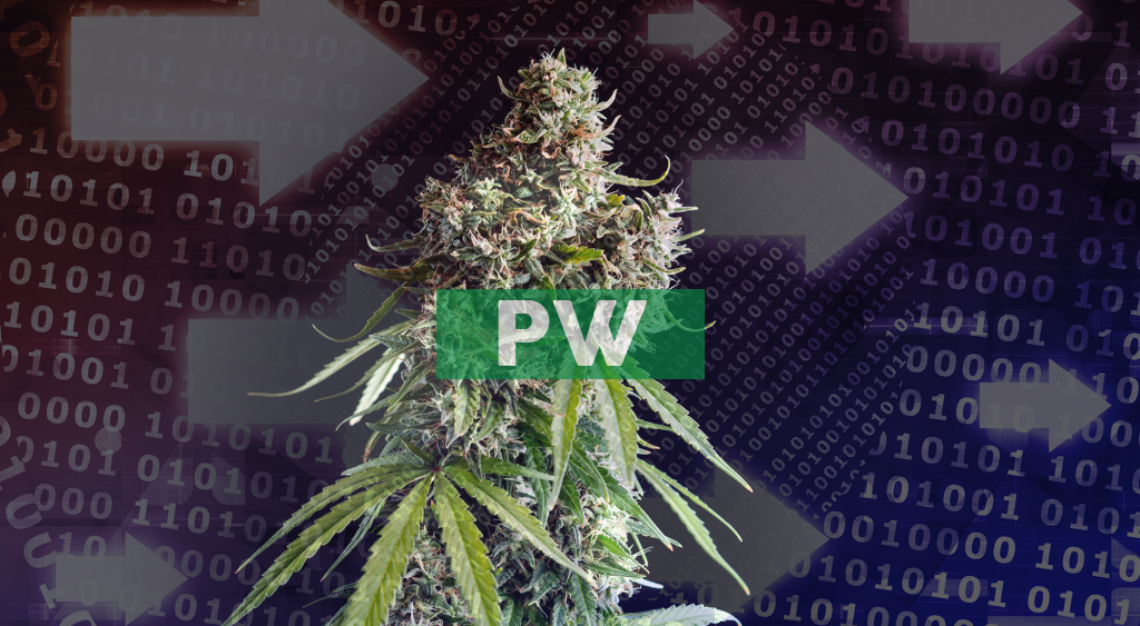 Power REIT Acquires 556,146 Square Foot Cannabis Greenhouse Cultivation and Processing Facility for $18.4 Million in Highly Accretive Transaction