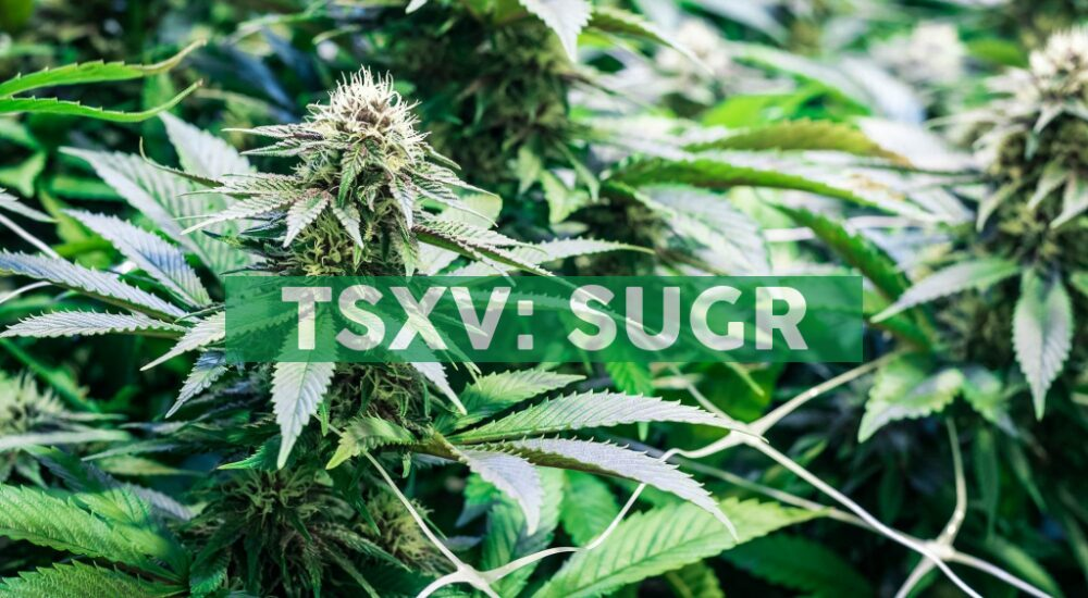 Sugarbud Announces Receipt of DTC Eligibility and the Close of a Non-Brokered Private Placement