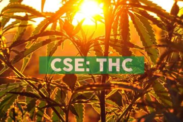 THC KISS Mango Beverage Shot Ships to BC Cannabis Stores