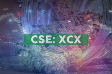 AMP Launches its CBD Brand, CANAVEX® at YES!CON, Germany's Largest Cancer Convention