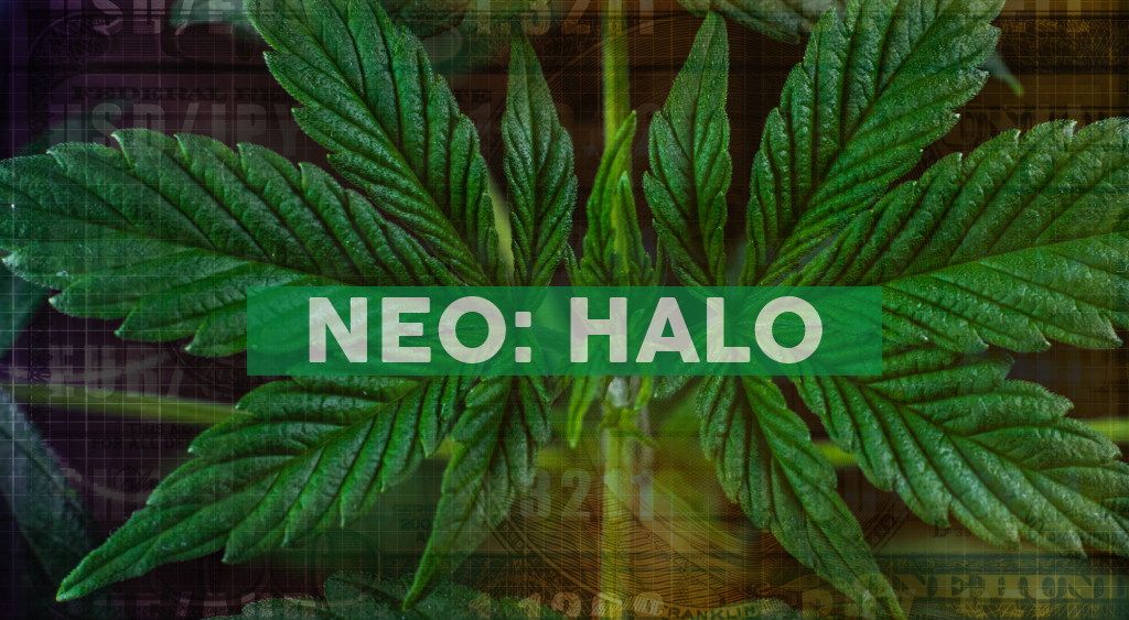 Halo Collective Today Announces the Completion of its At-the-Market Offering
